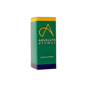 Absolute Aromas Camphor Oil 10ml
