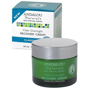 Andalou Naturals Clarifying Clear Overnight Clarifying Recovery Cream 50ml