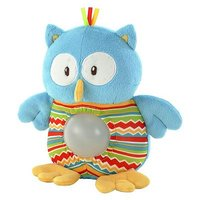 Early Learning Centre Blossom Farm Owl Night Light